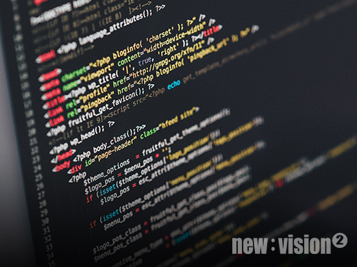 Newvision: Software